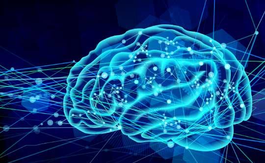 あがり症対策の最後の切り札「脳の特性を利用する」!